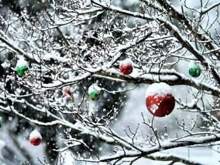 """Зимові канікули в гостинній садибі """"Родинне гніздо"""" в селі Губник."""