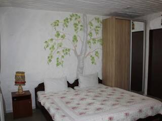 Комфорт 2-х местный в гостинице