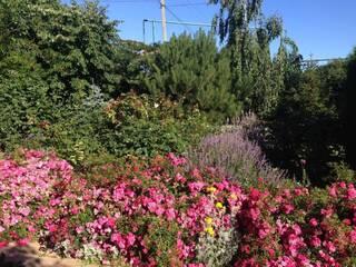 Ландшафтный сад