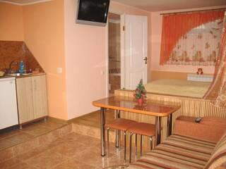 Частный сектор Квартира-студия в частном доме. Трускавец, Львовская область