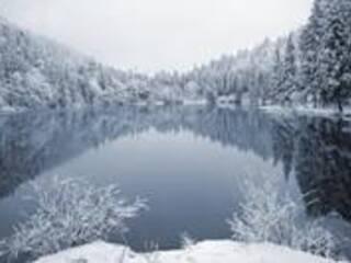 Свободные места на Синевирском озере!