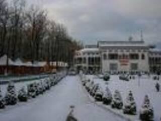 База отдыха Синевир Чергановка, Ивано-Франковская область