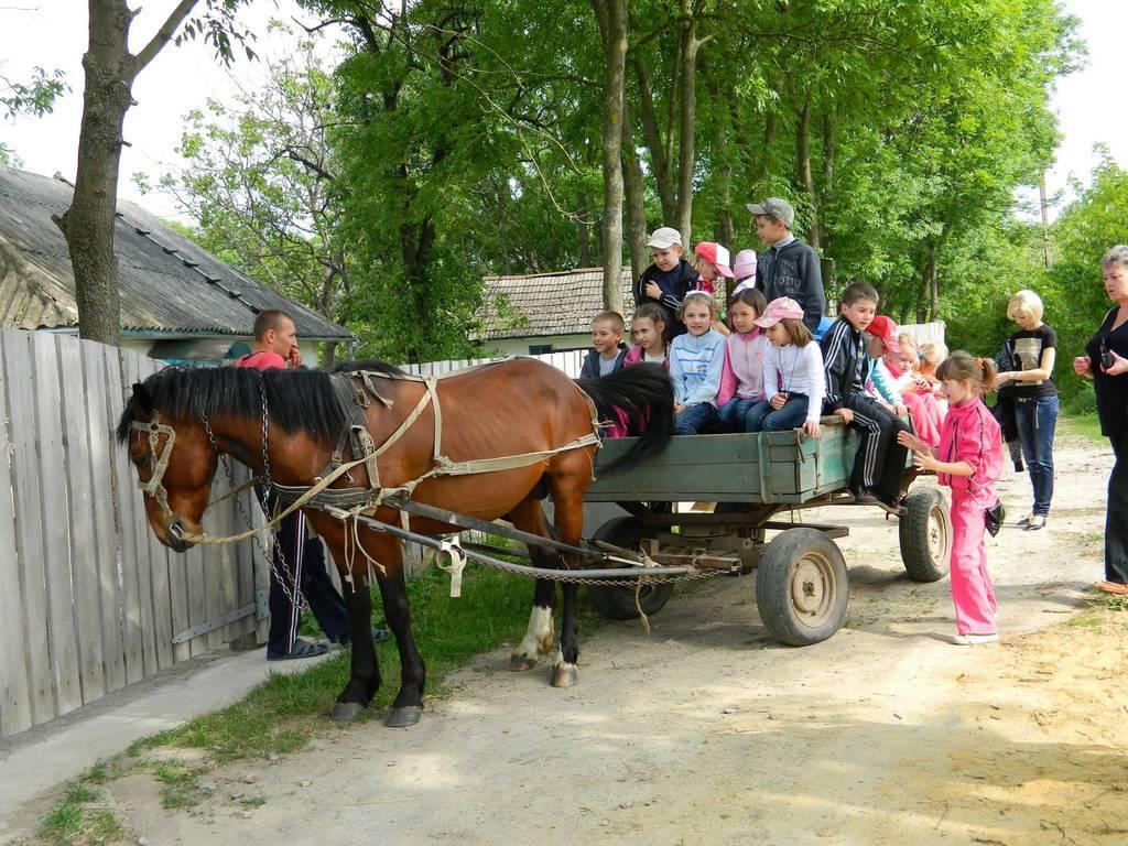 Гостинна садиба «Родинне гніздо» в с. Гармаки, Вінницької області - найкраще місце для відпочинку: з сім'єю, друзями, колегами.