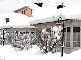 бабушкин сад зимой