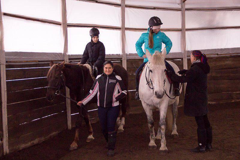 """Школа верховой езды """"Royal Horse"""""""