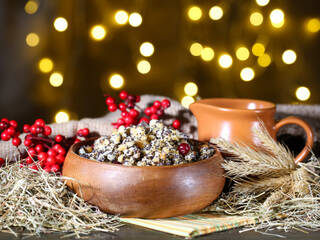 Різдвяні свята в гостинній садибі «Родинне гніздо».