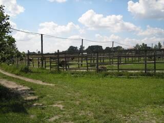 База отдыха Долина страусов Ясногородка (Макаровский район), Киевская область