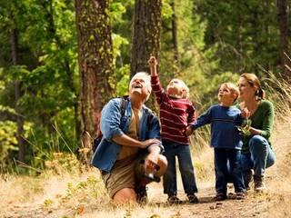 Лучший отдых с детьми – отдых в Карпатах