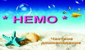 Частный сектор Немо Приморское (Большевик)
