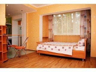Частный сектор 1 комнатная квартира посуточно Киев, Киевская область