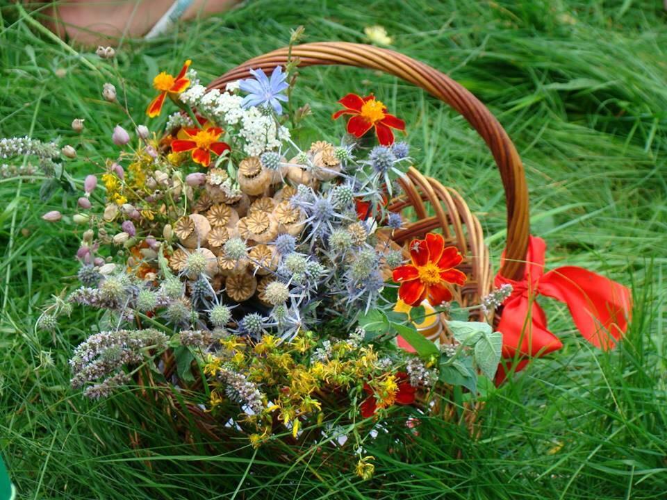 Запрошуємо відзначити свято Маковія в гостинній садибі «Родинне гніздо» в селі Канава, Вінницька область.