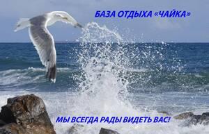 База отдыха Чайка Приморский Посад