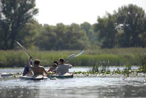 """База отдыха Туристическая база  """"Купава"""" Светловодск"""