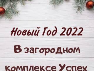 Новый Год 2022 в сосновом лесу на Днепре. Загородный комплекс Успех