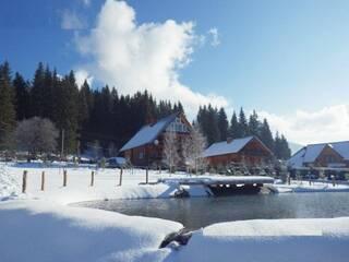 Мини-гостиница Дерев'яний міні-готель з каміном Буковель (Поляница), Ивано-Франковская область