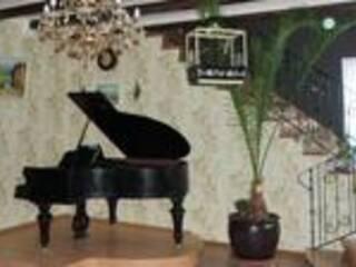 Мини-гостиница Homely Villa Чубинское, Киевская область