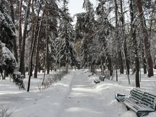 Зимова алея