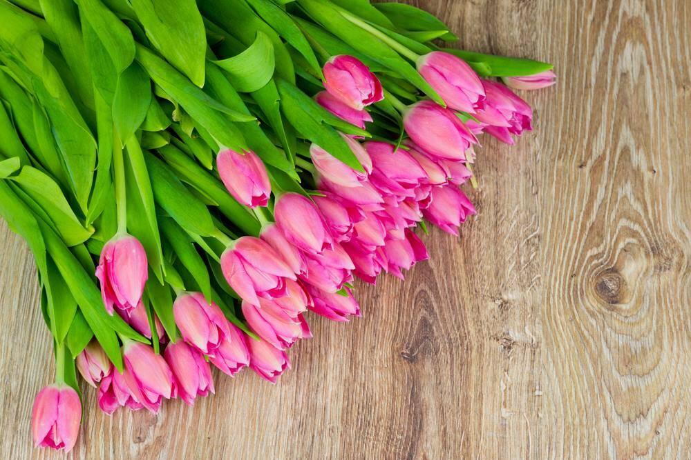 Гостинна садиба «Родинне гніздо» пропонуємо провести 8 березня в прекрасному і романтичному місці.