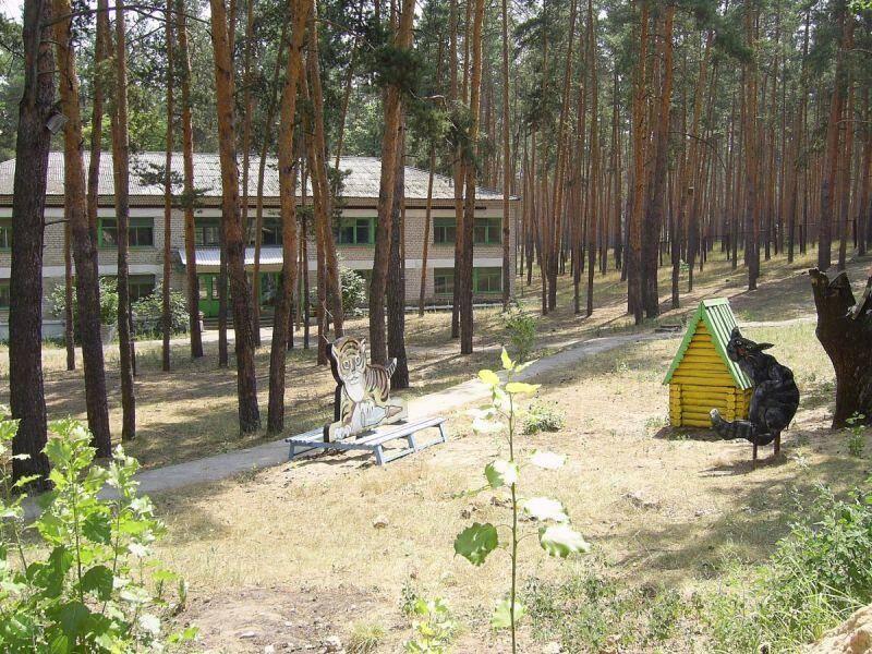 Рассказ про секс в лагере мечта фото 578-579