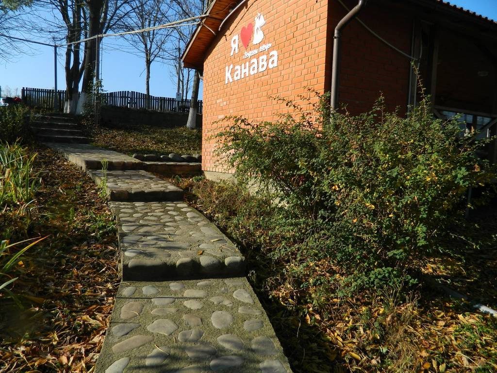 Бажаємо прекрасного дня та запрошуємо на відпочинок в гостинну садибу «Родинне гніздо» в селі Канава, Вінницька область.
