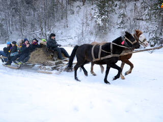 Зимние покатушки в повозке. Экскурсия. Ждем вашего звонка. Уточните все что интересно (063)273-8999; (066)895-6662; (097)44-541-44; (044)221-6446. Сайт: www.karamelproekt.com зимний лагерь в Карпатах.