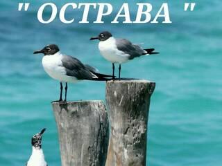 """База отдыха База отдыха """"Острава"""" Стрелковое, Херсонская область"""