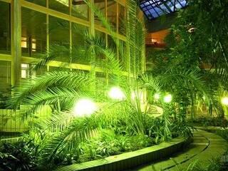 зимовий сад вночі