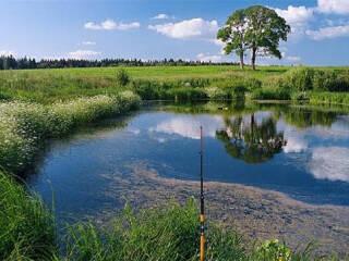 """Отдых за городом. Рыбалка. Загородный дом """"ЭкоКомфорт"""" приглашает Вас и друзей!"""