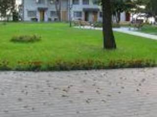 База отдыха Свитязь-Центр Гряда, Волынская область