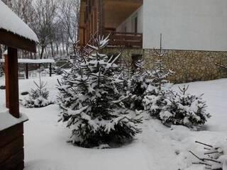 Прекрасна, казкова зима в цьому році, друзі! Не втрачайте час – бронюйте найкращі номери для відпочинку в гостинній садибі «Родинне гніздо» в селі Гармаки, Вінницька область.