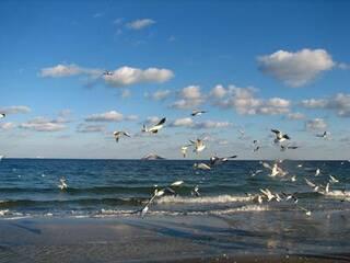 Новости Украины назвали лучшие места для морского отдыха