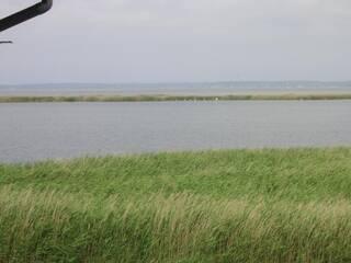 Мини-гостиница Отдельный двухкомнатный номер с видом на залив азовского моря Белосарайская коса, Донецкая область