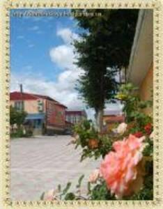 Гостиница Королевская бочка Житомир