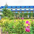 База Отель Ирина в Грибовке
