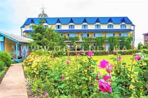 Гостиница База Отель Ирина в Грибовке Грибовка