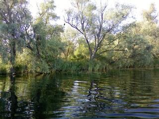 База отдыха Рыбалка и Охота У Панночки Кизомыс, Херсонская область