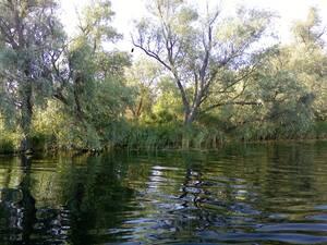 База отдыха Рыбалка и Охота У Панночки Кизомыс