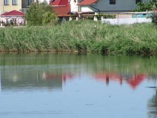 Мини-гостиница Дача на первой морской полосе Каролино-Бугаз, Одесская область