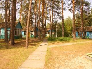 База отдыха Чайка Пирново, Киевская область
